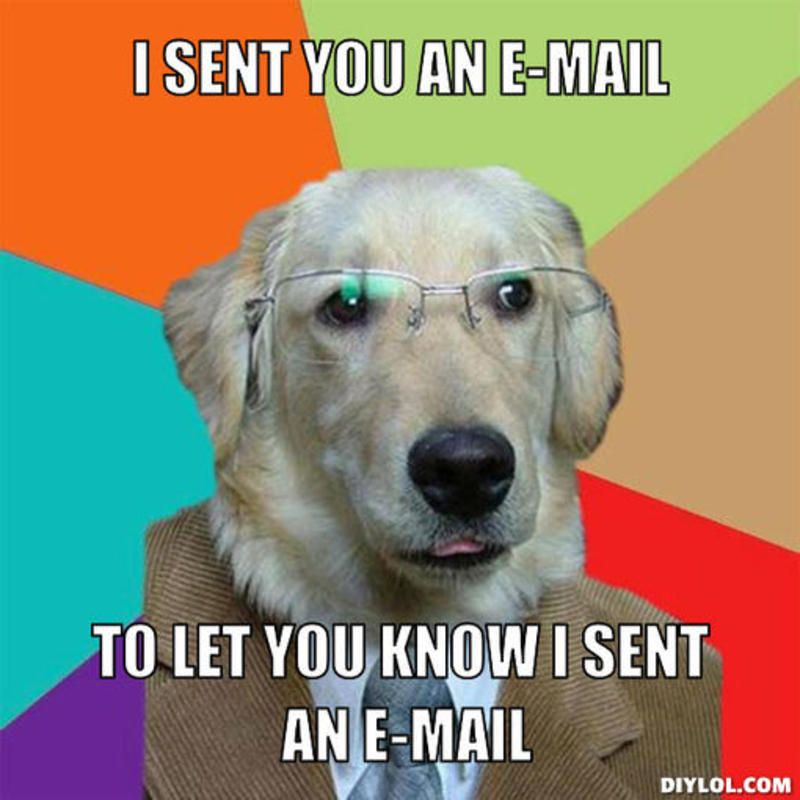 resized_business-dog-meme-generator-i-sent-you-an-e-mail-to-let-you-know-i-sent-an-e-mail-4012b0