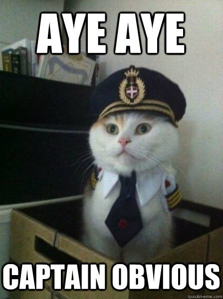 cat with  uniform
