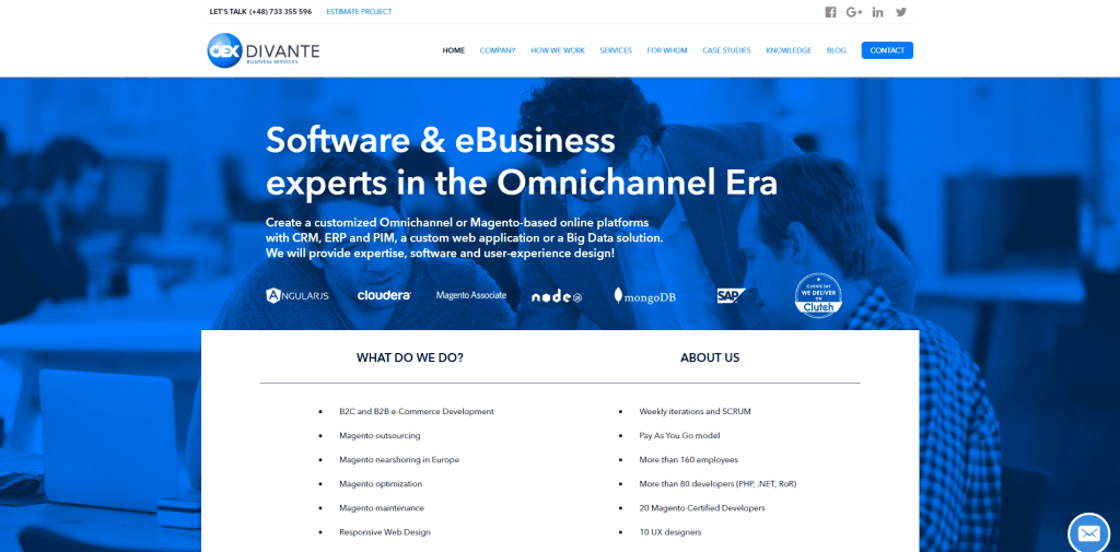 Divante.co eBusiness and eCommerce experts
